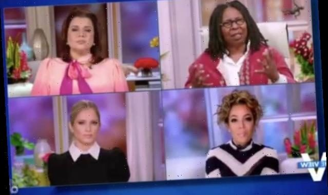'The View' Rips Trump for Wooing Michigan Leaders: 'It's a Coup!' (Video)