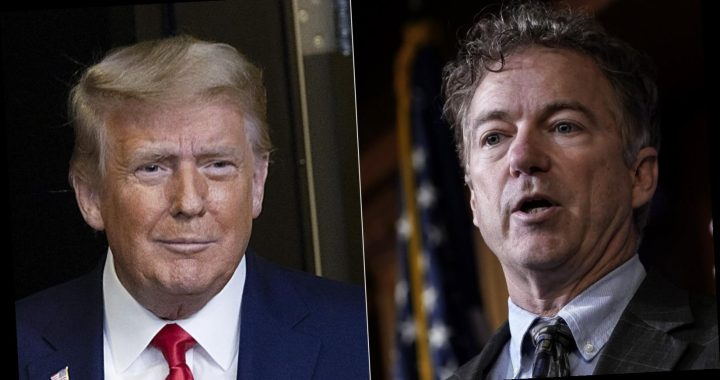 Inside Donald Trump's Relationship With Rand Paul