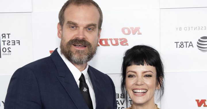 The Real Reason David Harbour And Lily Allen Decided To Get Married