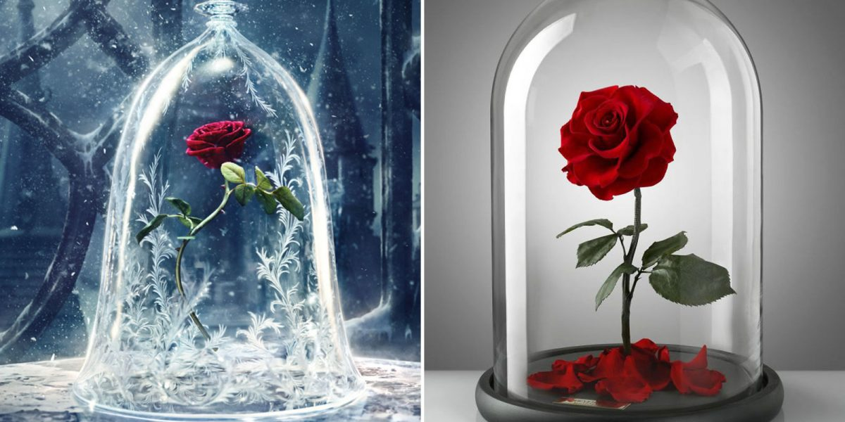 Beauty and the Beast Rose Kit, Red Silk Rose and Led Light …