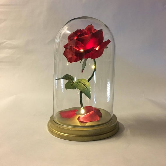 Beauty and the beast rose in glass